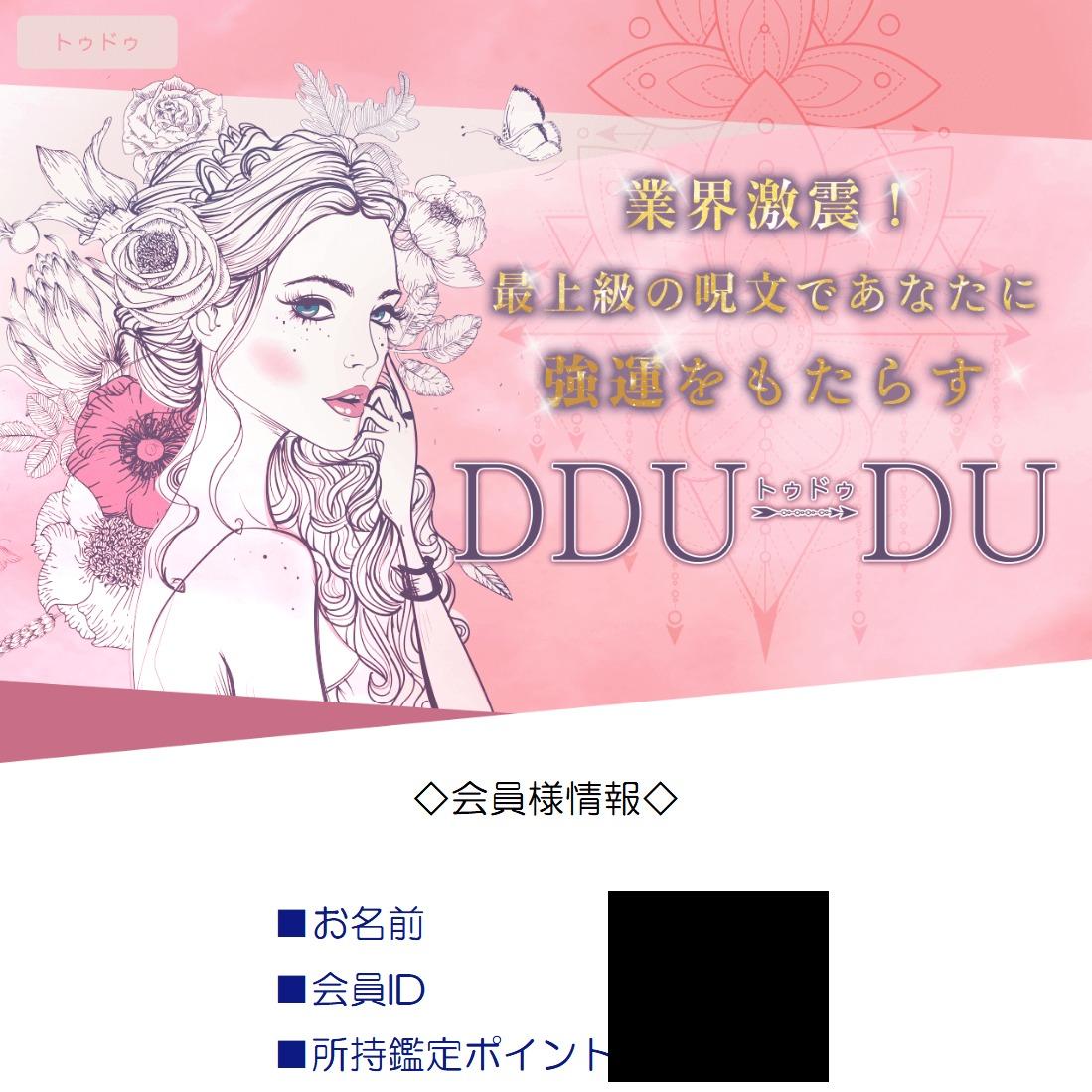 【トゥドゥ(DDU-DU)】の被害報告
